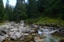 Potok Krupa nadnie Doliny Mięguszowieckiej