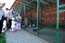 Fragment Mini Zoo, Marysie szczególnie zainteresował paw
