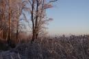 Lusowo, zima 2009