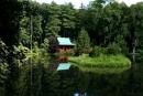 Pałac Mierzęcin - park japoński