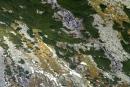 Batyżowieckie Wodospady