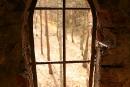 Jedno z okien wieży