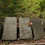 Nagrobki z obozowego cmentarza
