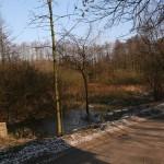 Zbiornik wodny po drugiej stronie drogi