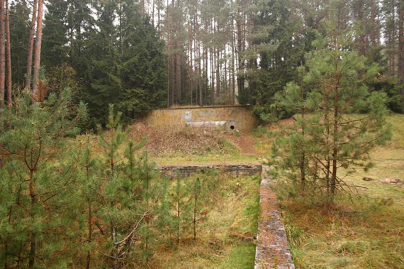 Brzeźnica Kolonia, obiekt typu Monolit