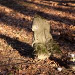 Cmentarz położony nieopodal kościoła