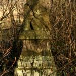 Stary cmentarz ewangelicki w Kosinie