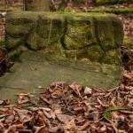 Cmentarz w Starych Bielicach
